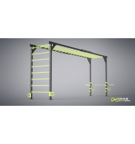 dhz fitness dhz crossfit rig 4390