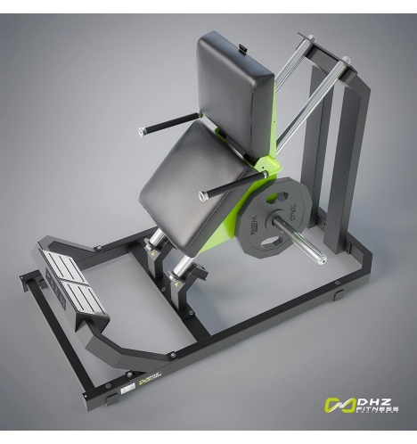 dhz fitness dhz plate loaded calf 3798